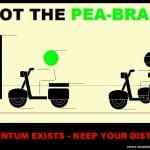 spot the pea-brain - pending - WP565